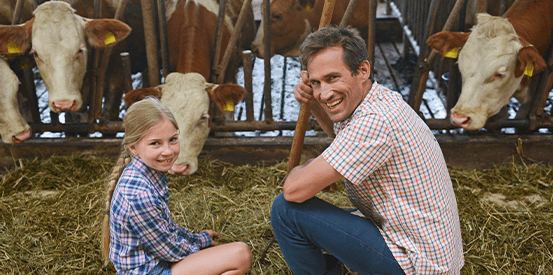 Man and young girl checking on cows